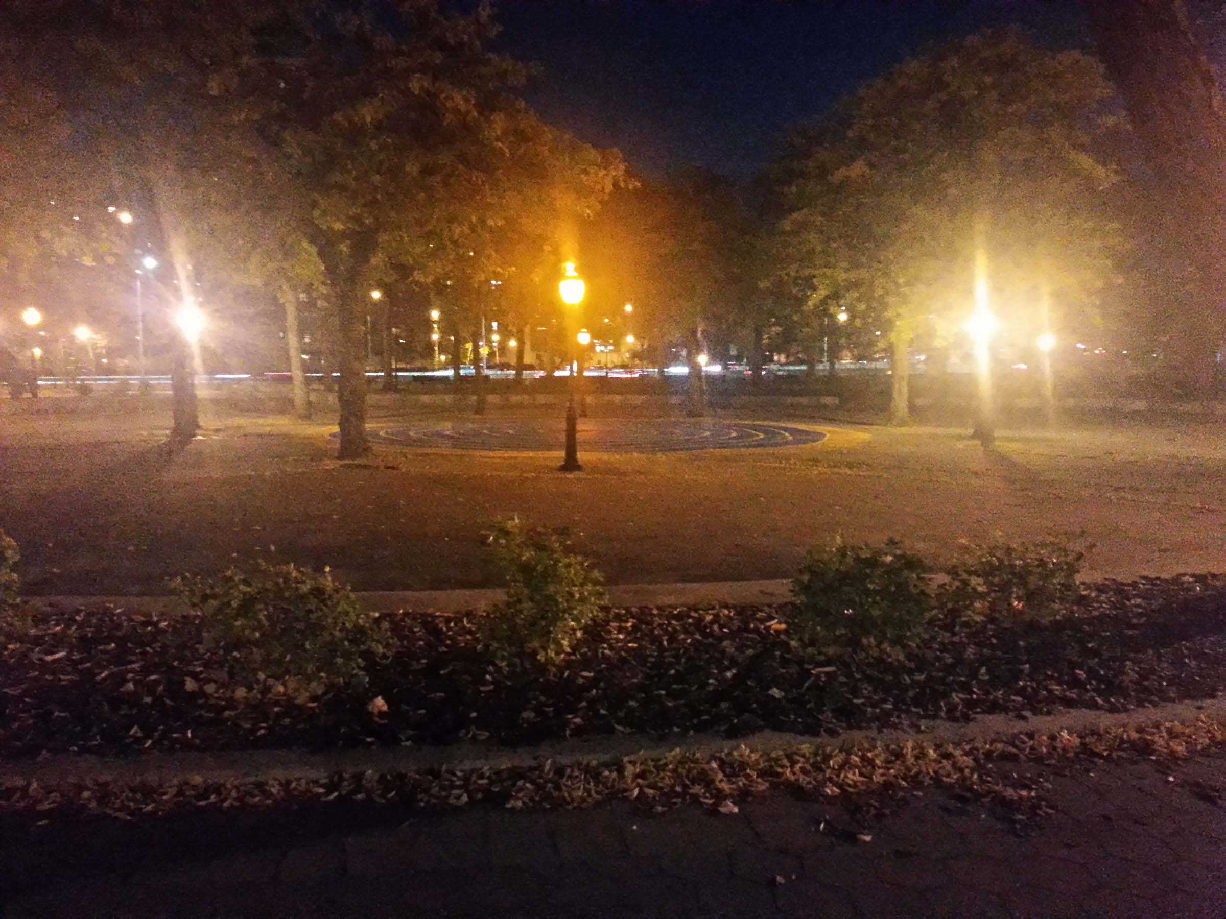 An empty courtyard at night. At its center is a circle of pavement with spiraling lines on it. It is surrounded by a ring of trees and lamp posts.