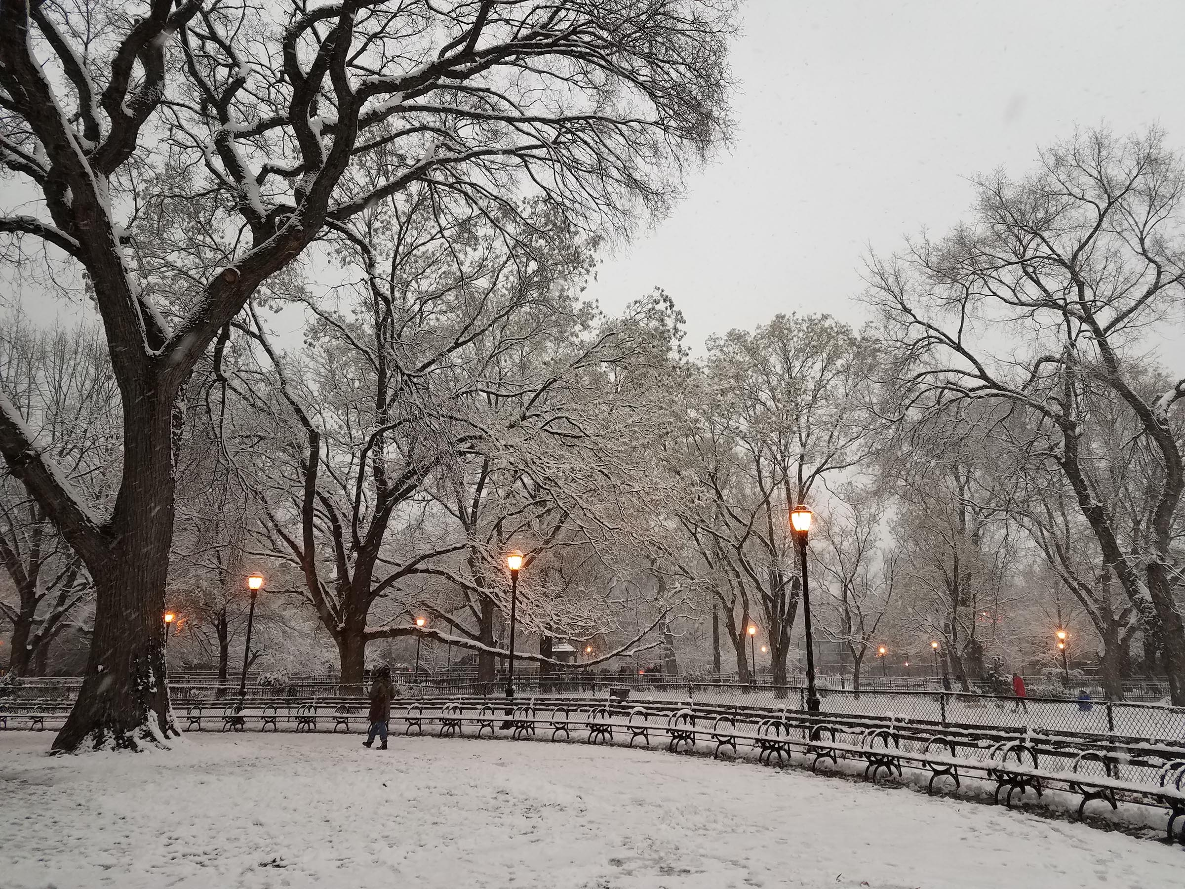 Daylight in a park, under a gray sky. The ground and trees are covered in a thin layer of snow. The street lamps are on. A few people walk in the distance.