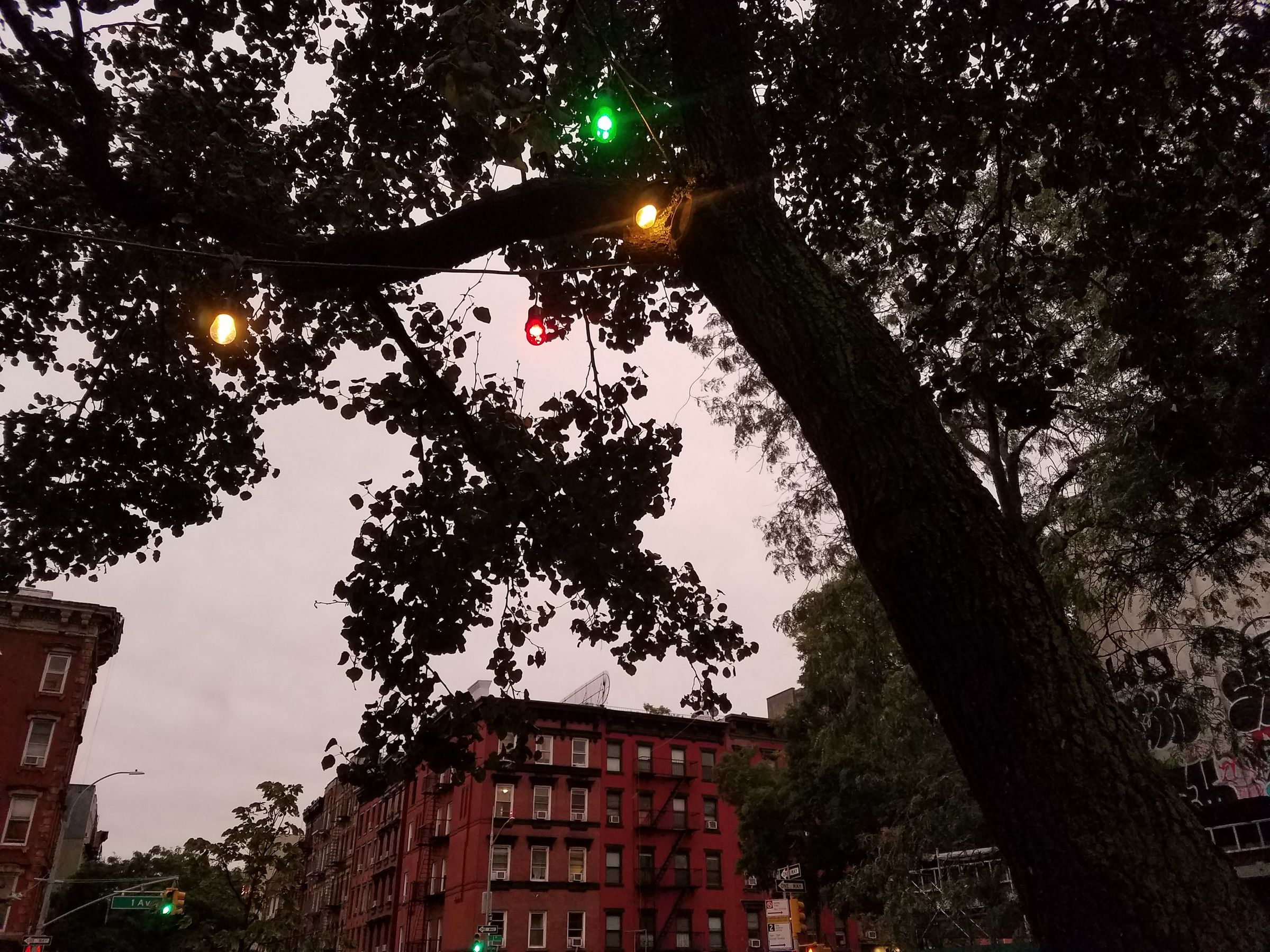 Dusk on a New York sidewalk. A street sign for 1st Avenue is in the distance. The sky is a light violet, and in the foreground is a darkened tree with a string of colored incandecent lights in its branches.