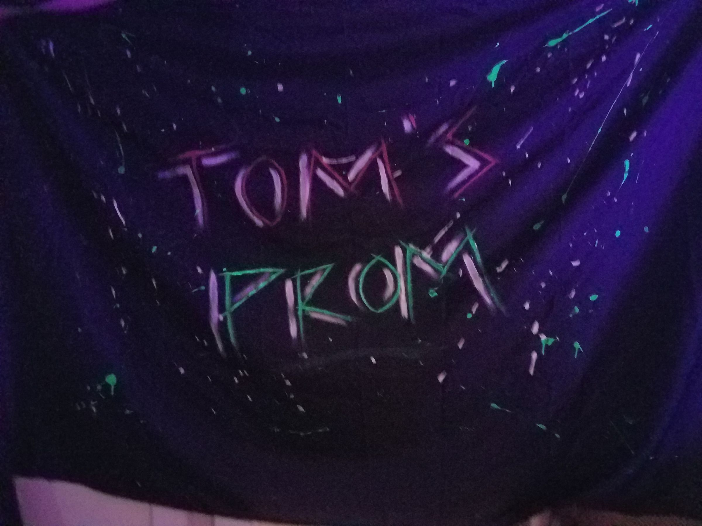 "A black fabric banner with the words ""Tom's Prom"" written in angular pink and green letters, with a white drop shadow. Green and white paint splatters cover the rest of the banner."
