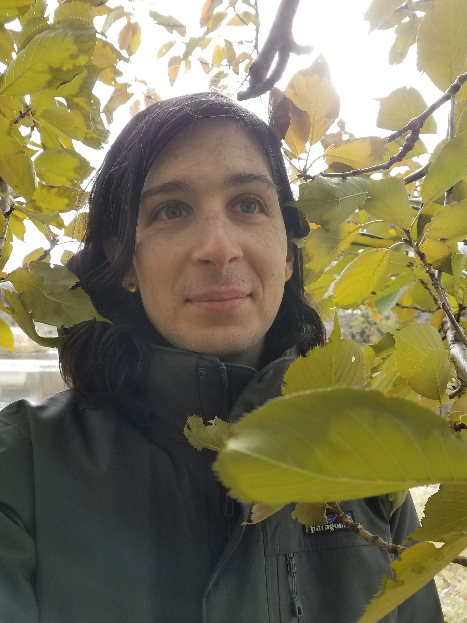 A person in a gray jacket, sitting in some leafy branches, smiling at something behind the camera.