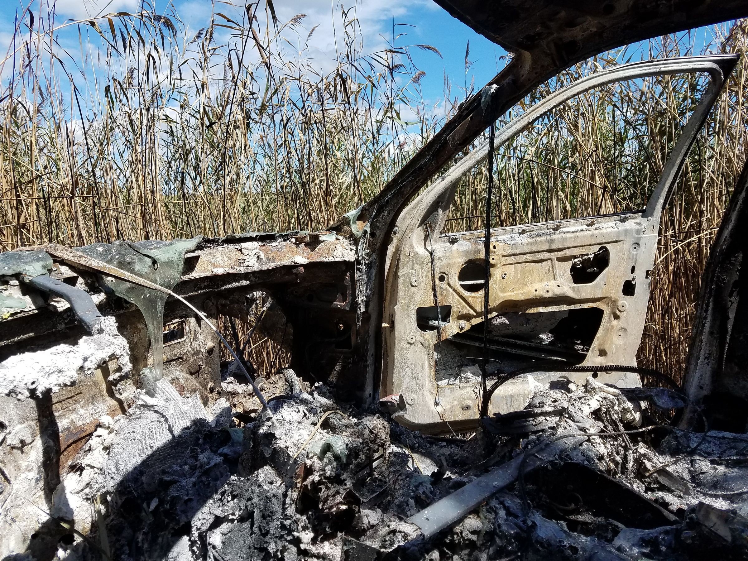 A photo taken from inside the front seat of a burned-out car. A bunch of tall grass and blue sky is visible through the space where the windshield would be.